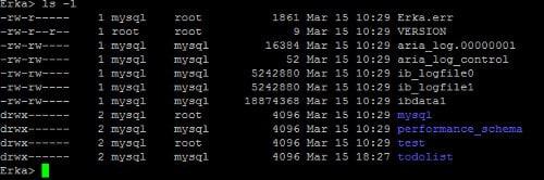 Commande linux ls -l