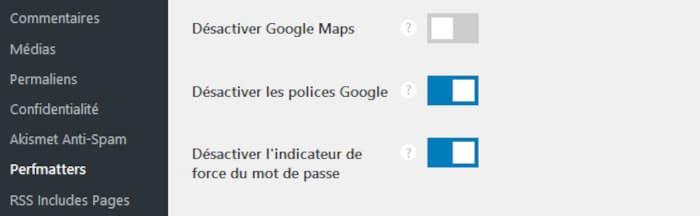 Option de perfmatters pour désactiver les polices de Google